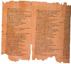 Papyrus Scrolls